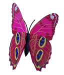 Schmetterlingsschmuck