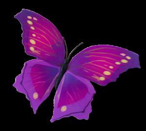Schmetterling- Schmieder